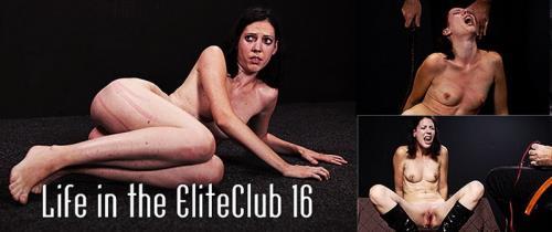 Life in the EliteClub 16 - Torture (SiteRip/ElitePain/SD540p)
