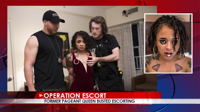 Holly Hendrix - Former Pageant Queen Busted Escorting / 11-10-2017 (OperationEscort) [SD/480p/MP4/548 MB] by XnotX