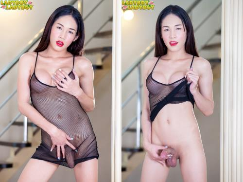 Alice - Very Horny Alice Toys And Cums! [HD, 720p] [LadyBoy-LadyBoy.com]