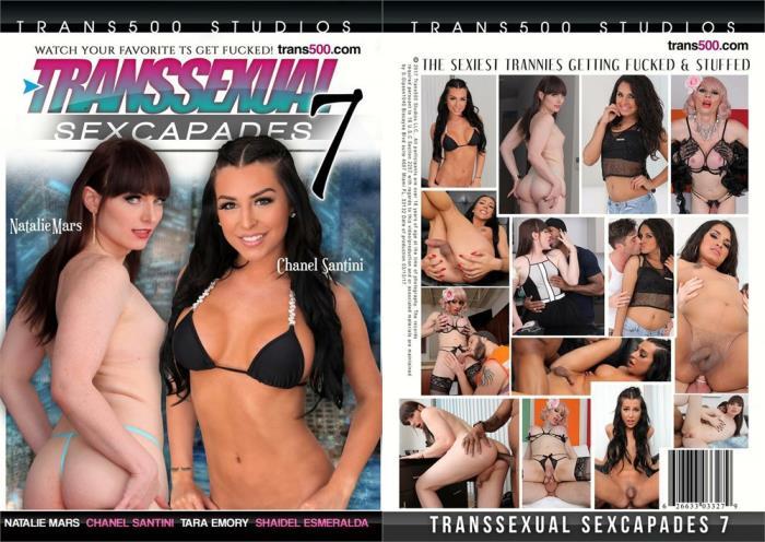 Transsexual Sexcapades 7 (Trans 500 Studios) HD 720p