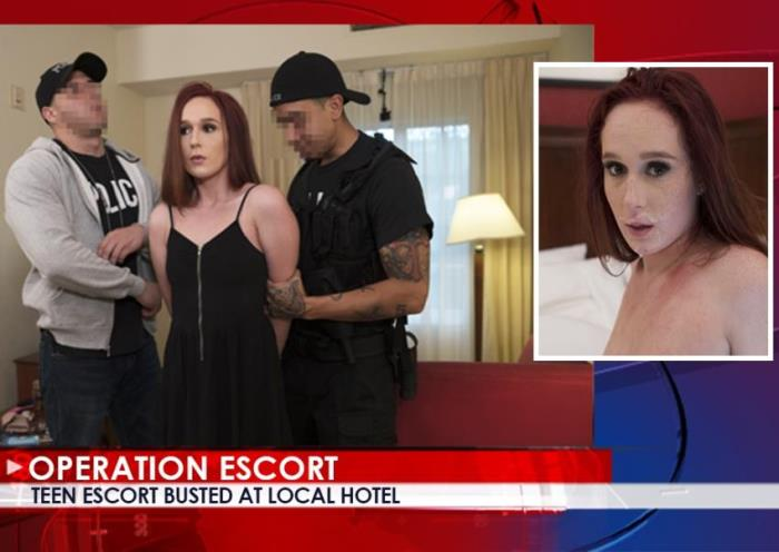 OperationEscort/FetishNetwork: Alice Coxxx - Teen Escort Busted At Local Hotel [FullHD 1080p] (1.9 Gb)