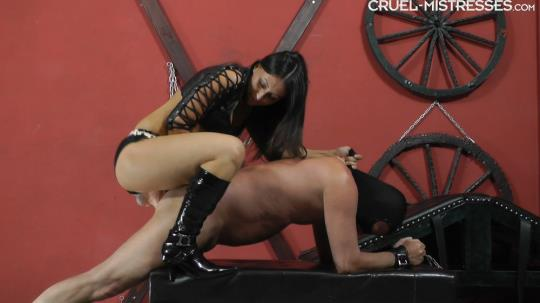 CruelAmazons, Cruel-Mistresses: Mistress Sophie - Inside His Ass (FullHD/1080p/612 MB) 19.10.2017