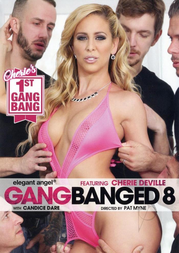 Gangbanged 8 [DVDRip 404p]