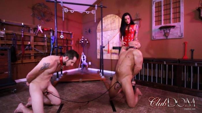 Mistress Maria\'s Tug Of Balls Mia Marley (ClubDom) FullHD 1080p