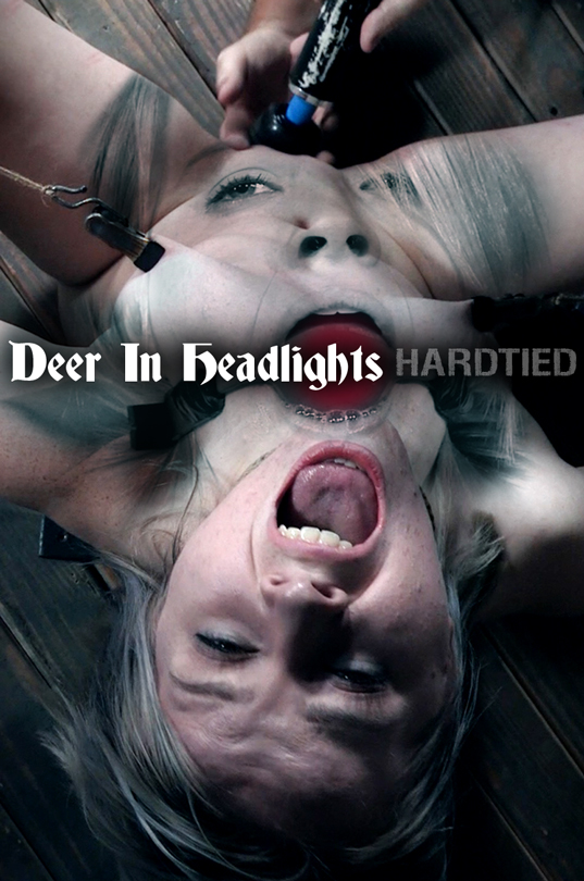 Bambi Belle - Deer In Headlights (HardTied) HD 720p