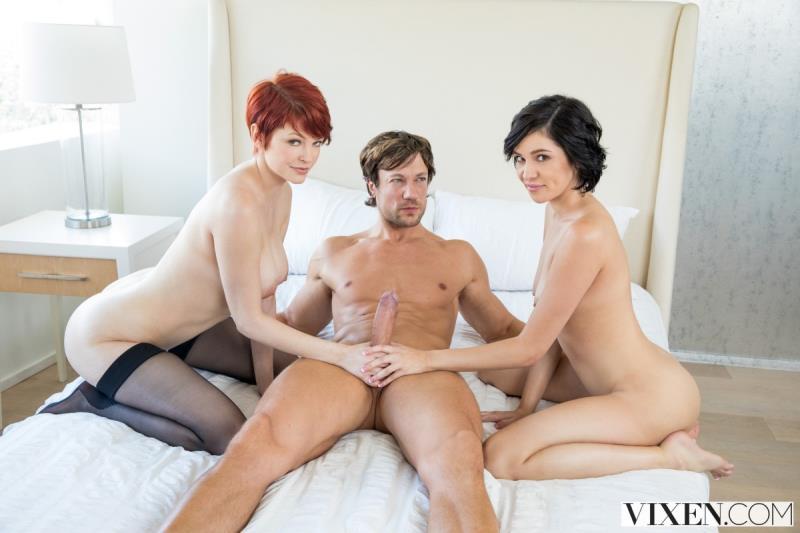 Vixen.com: Bree Daniels, Cadey Mercury - My Wife REALLY Likes You [SD] (810 MB)