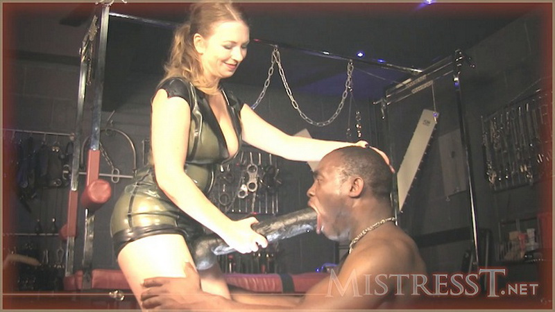 Mistresst.com - Mistress T - Huge Strapon Suck n Ass Fuck [HD / 2014]