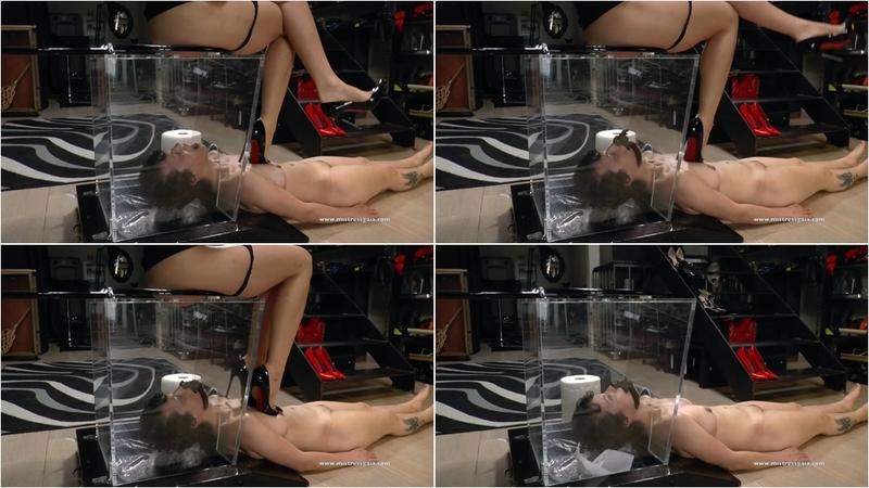 Melania - REINCARNATION OF THE HUMAN TOILET - HD 720p