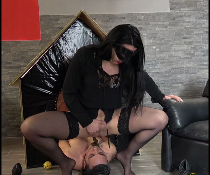 MISTRESS GAIA - SCAT IN HIS DOGHOUSEHD version (Scat Domination, Femdom Scat)  [HD 720p]