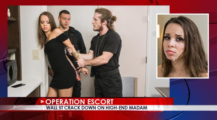 Liza Rowe - Wall St Crack Down On High - End Madam [OperationEscort] 480p