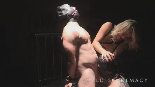 FemaleSupremacy: Manipulation with Mistress Tess (FullHD/1080p/916 MB) 16.12.2017