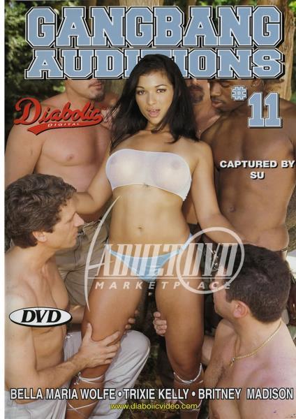 Gangbang Auditions 11 (2004/WEBRip/SD)