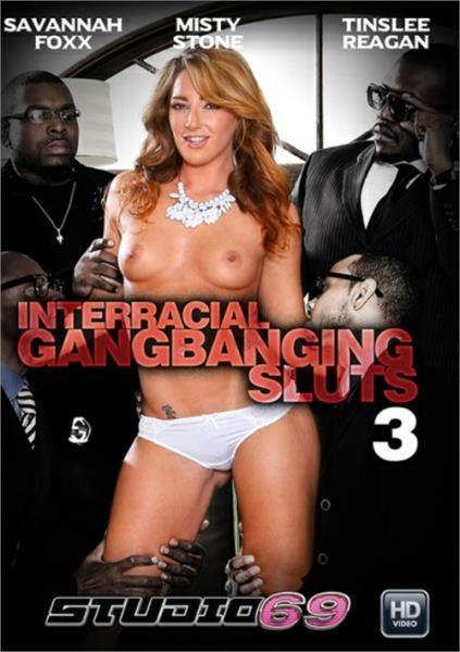 Interracial Gangbanging Sluts 3 (2017/WEBRip/SD)