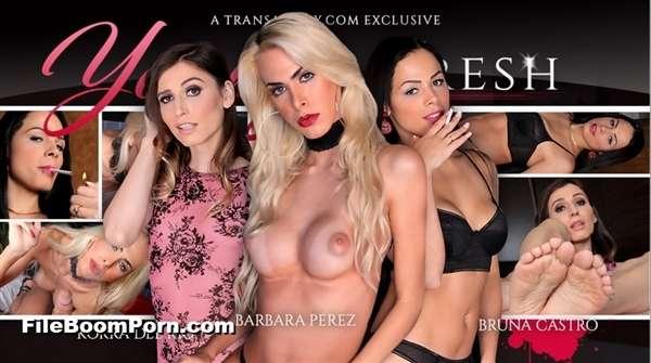 TransAtPlay, Trans500: Barbara Perez, Bruna Castro, Korra Del Rio - Young and Fresh [SD/360p/1.53 GB]