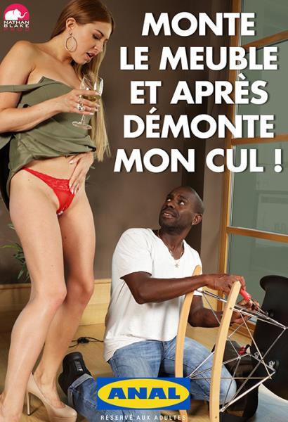 Monte Le Meuble Et Apres Demonte Mon Cul (2012/WEBRip/FullHD)