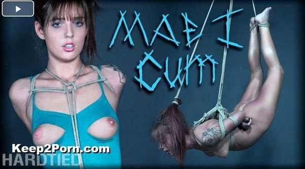 Scarlett Mae - Mae I Cum [HardTied / SD]