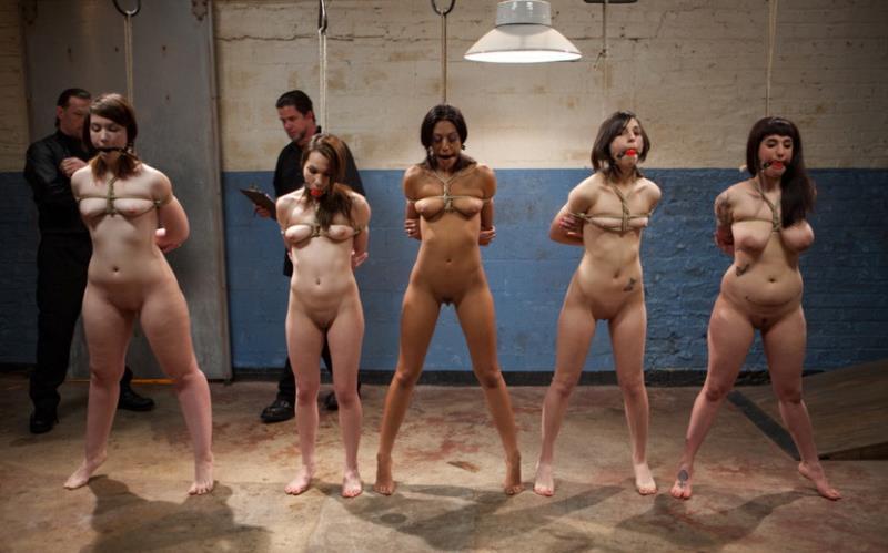Arabelle Raphael, Lillianne Lane, Lyla Storm, Kristine Kahill and Kayla Kay - The Training OfO (Kink) [HD 720p]