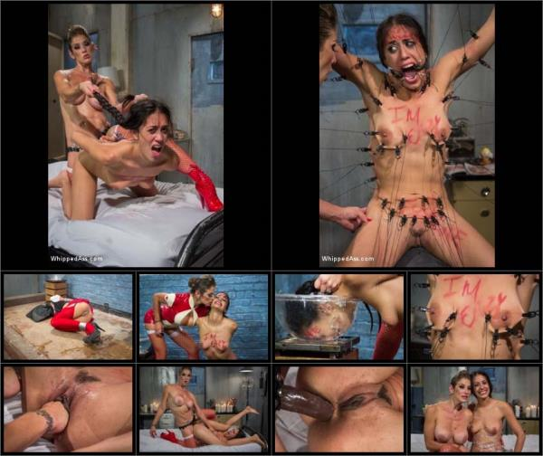 Felony, Lyla Storm - A Whipped Ass Halloween Special! (2019/HD)