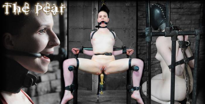 Claire Adams - The Pear (HD 720p) - InfernalRestraints - [2019]