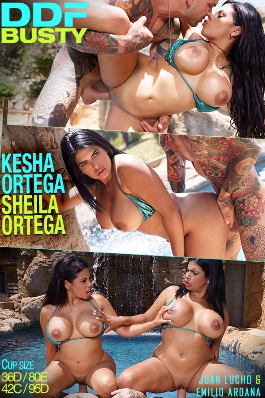 Kesha Ortega, Sheila Ortega - Curvy Twins Double Fuck (SD 480p) - DDFNetwork - [2019]