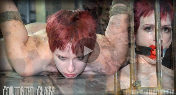 Claire Adams - Contorted Claire 2 [HD 720p] 2019