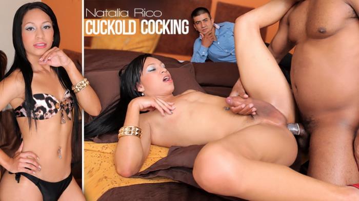Natalia Rico - Cuckold Cocking (HD 720p) - Trans500 - [2019]