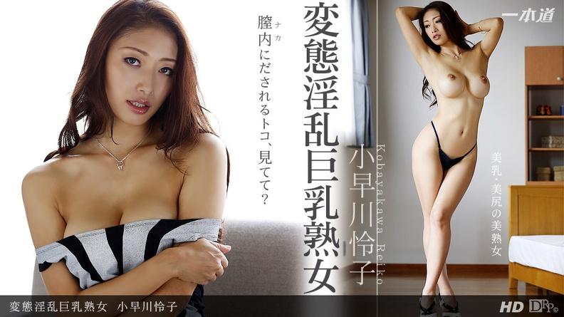 Kobayakawa Reiko: Drama Collection (SD / 396p / 2019) [1pondo]