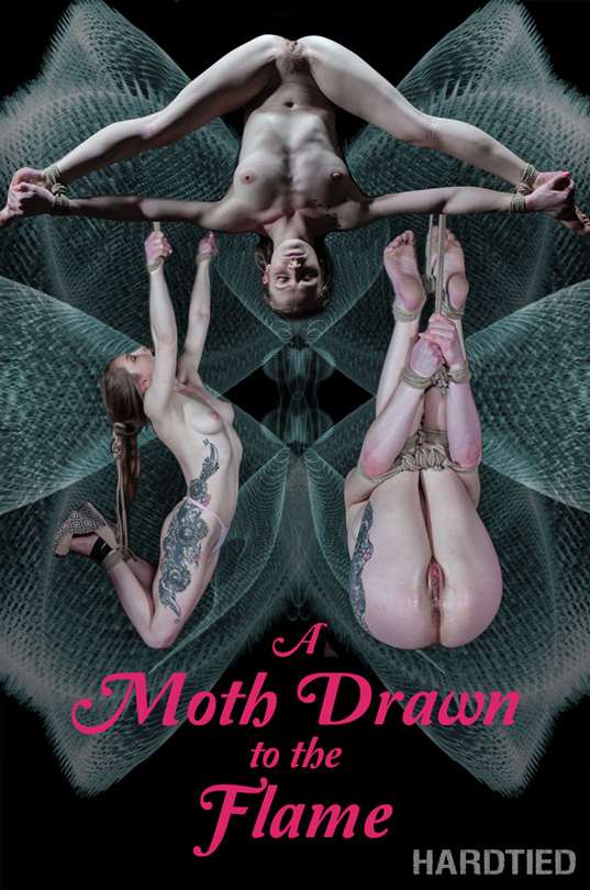 A Moth Drawn To The Flame / Cora Moth / 24-02-2019 [HD/720p/MP4/2.12 GB] by XnotX