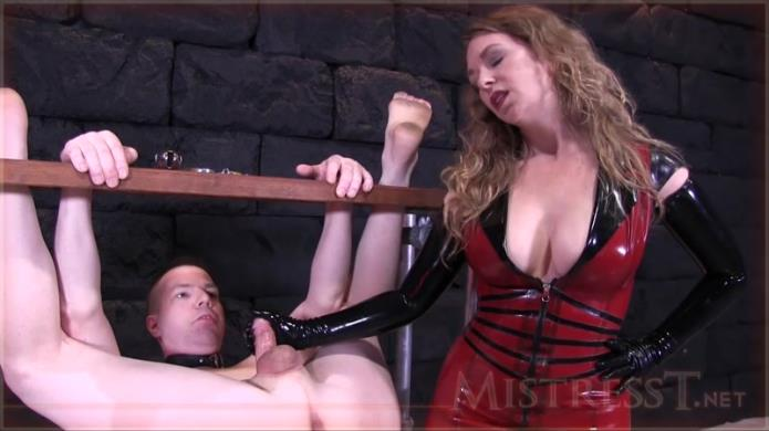 Extreme Humiliating Bound Milking! / Mistress T / 05-02-2019 [HD/720p/MP4/349 MB] by XnotX