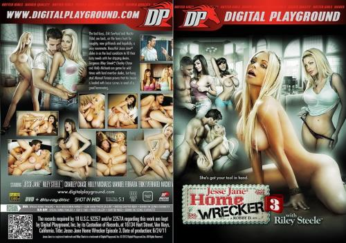 Home Wrecker 3 (2019/SD/480p/1.37 GB)
