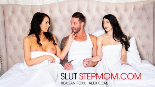 Alex Coal, Reagan Foxx, Quintin James - Slut Step Mom (SD)