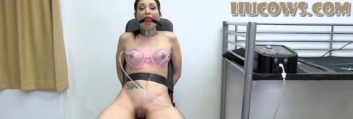 Valentina Bianco - First training (15.03.2019/HuCows.com/FullHD/1080p)