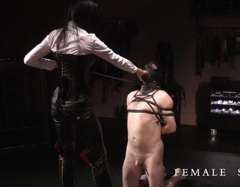 Lady Mephista: Fair Game Lady Mephista Hot Femdom (FullHD / 1080p / 2019) [Clips4Sale]