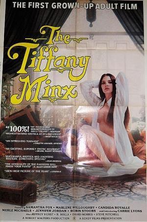 The Tiffany Minx [Sendy Film Corporation, Roberta Findlay / DVDRip / 384p]