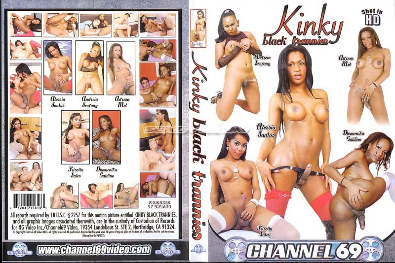 Kinky Black Trannies (2010 / SD 480p)