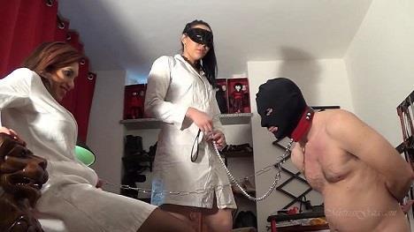 Mistress Gaia - Getting his erection back [SD, 576p] [Clips4sale.com]