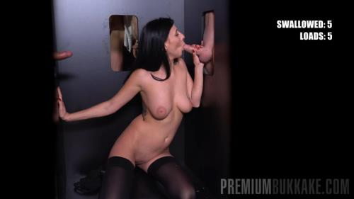 Sherry Vine - Mega GloryHole [FullHD, 1080p] [PremiumBukkake.com]