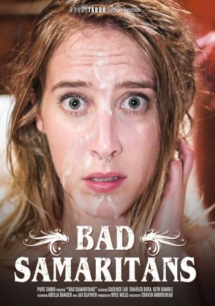 Плохие самаритяне / Bad Samaritans (2019/FullHD)