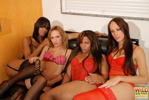 Alessandra Leite, Kawanna Di Prado, Leticia Close, Luana Weickert - Grape Orgy (908 MB)