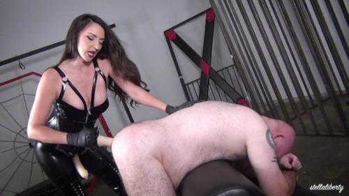 Stella Liberty - Dungeon Strap On Slut [HD, 720p] [Clips4sale.com]