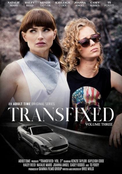 Пронзенная 3 / Transfixed 3 (2019/FullHD)