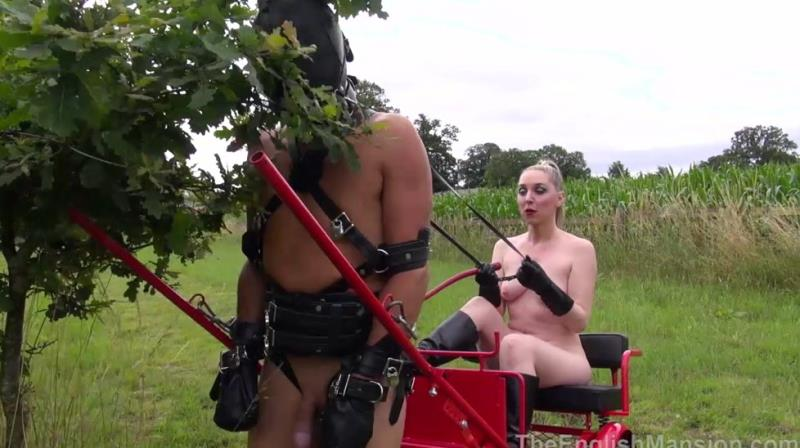 Clips4Sale: (Unknown) - Blind Obedience Complete [HD / 542 MB]