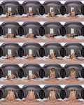 Cindy Shine - Virtual Girlfriend - Riding Your Big Dick [UltraHD 4K, 3000p]