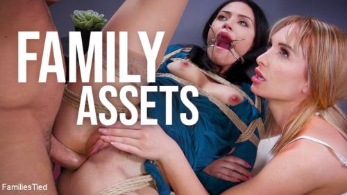 Daisy Stone, Avi Love - Family Assets: Cold Hearted Step-Sister Warms Up To Her Brother's Cock [SD, 540p] [FamiliesTied.com, Kink.com]
