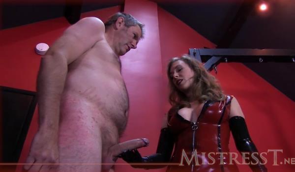 Husband Training - MISSTRESS T [Clips4Sale] (HD 720p)