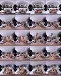 Georgie Lyall, Alecia Fox, Masha - Family Foursome Is Awesome! [UltraHD 4K, 2700p]