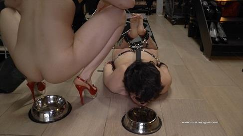 Mistress Gaia - Enjoy With Shit (HD 720p)