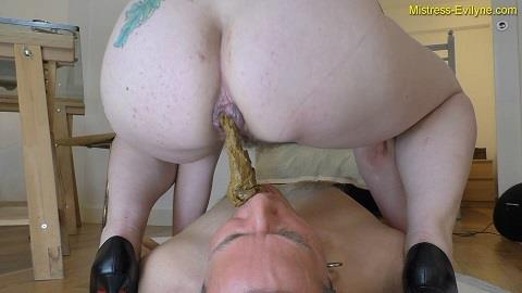 Mistress Evilyne - Begging To Be Used (FullHD 1080p)